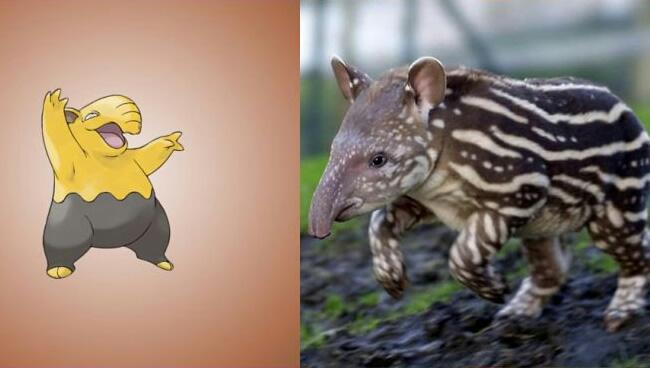 pokemons baseados em animais reais 04