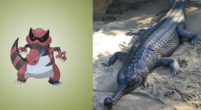 pokemons baseados em animais reais 14